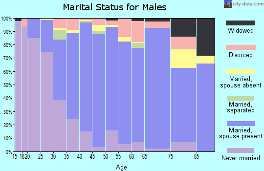 Zip code 53562 marital status for males