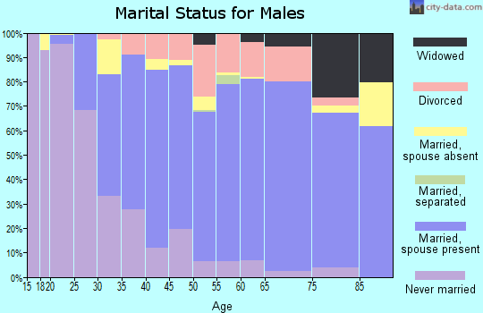 Zip code 53589 marital status for males