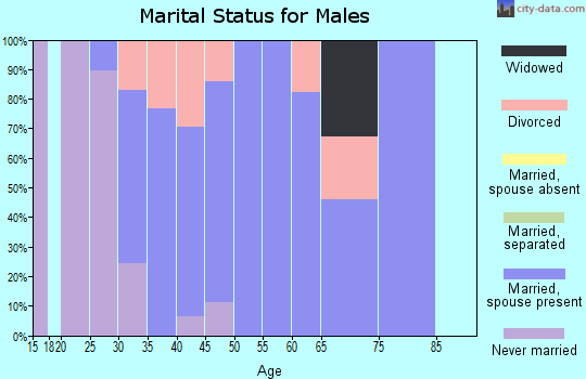 Zip code 53598 marital status for males