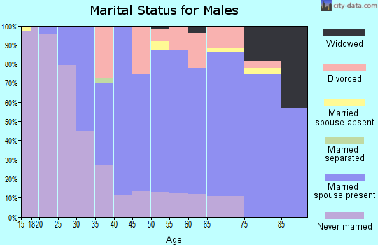 Zip code 53806 marital status for males
