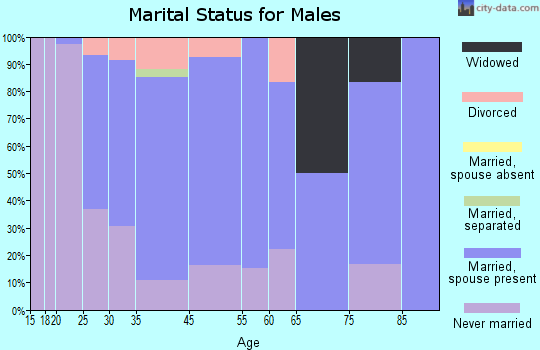 Zip code 54012 marital status for males