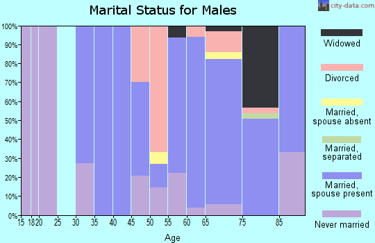Zip code 54104 marital status for males