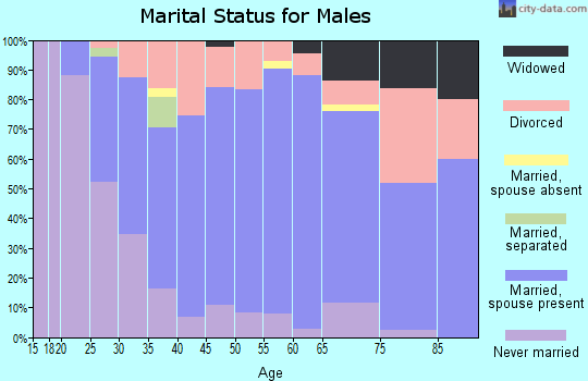 Zip code 54129 marital status for males