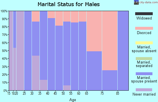 Zip code 54141 marital status for males