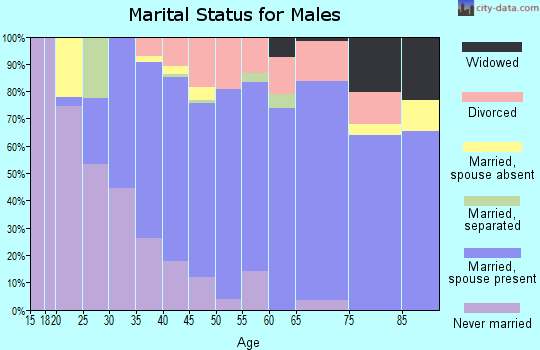 Zip code 54151 marital status for males