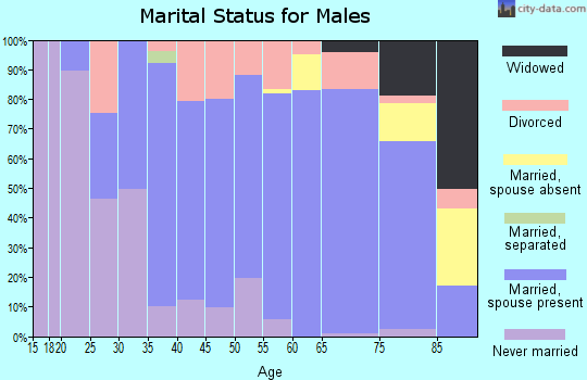 Zip code 54157 marital status for males