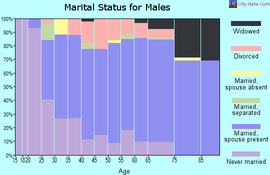 Zip code 54208 marital status for males