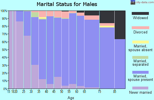 Zip code 54313 marital status for males