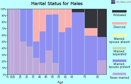 Zip code 54447 marital status for males