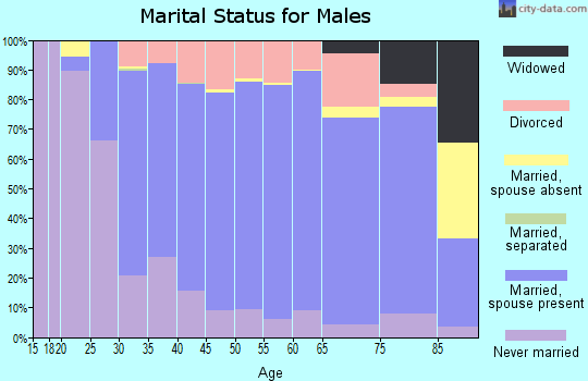 Zip code 54451 marital status for males