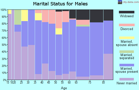 Zip code 54473 marital status for males