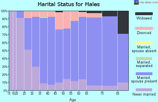 Zip code 54484 marital status for males