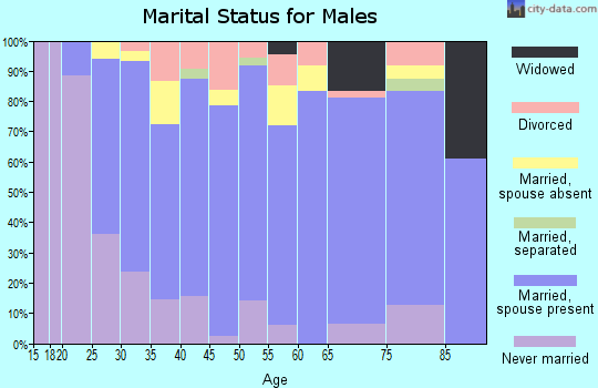 Zip code 54498 marital status for males