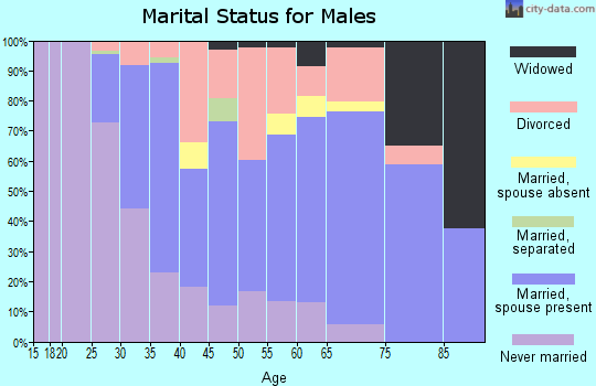 Zip code 54603 marital status for males