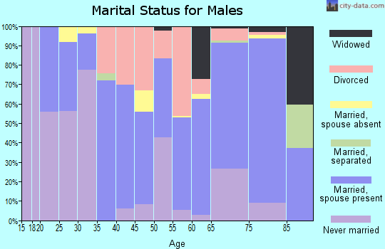 Zip code 54812 marital status for males