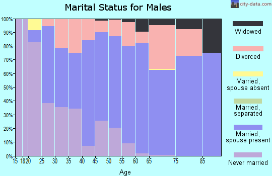 Zip code 54819 marital status for males