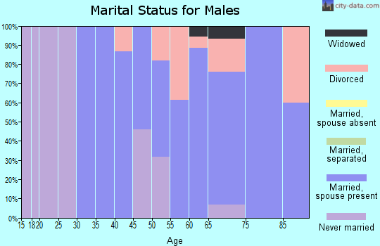 Zip code 54832 marital status for males