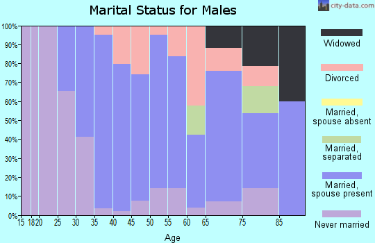 Zip code 54854 marital status for males