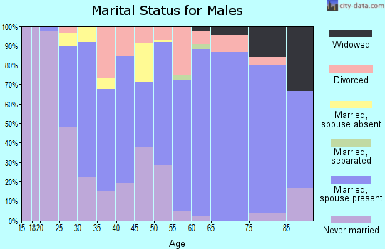 Zip code 54930 marital status for males