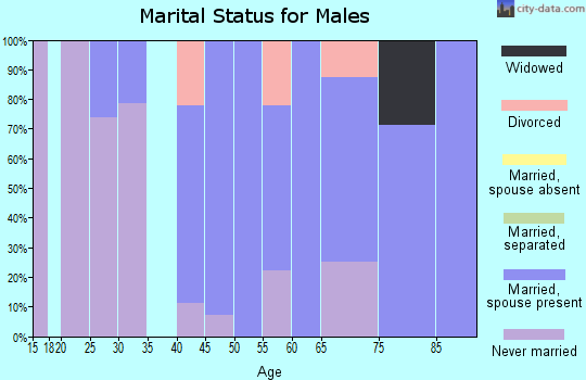 Zip code 54933 marital status for males