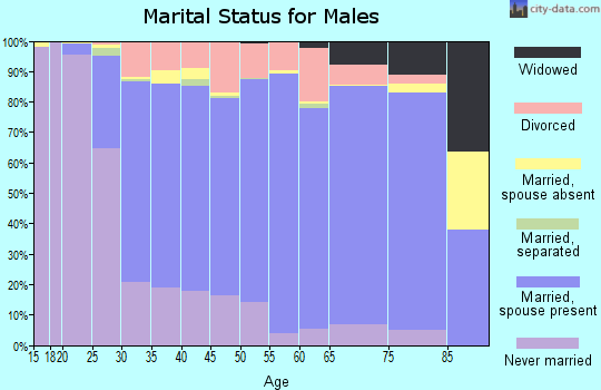Zip code 54956 marital status for males