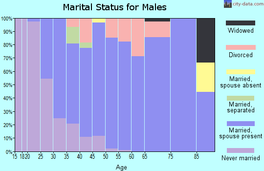 Zip code 55031 marital status for males