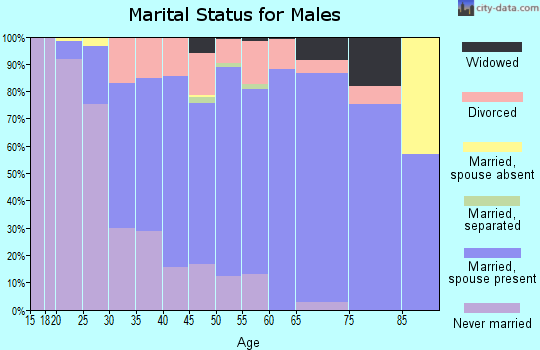 Zip code 55043 marital status for males