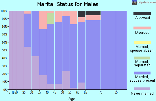 Zip code 55065 marital status for males