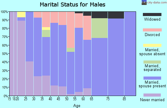 Zip code 55070 marital status for males