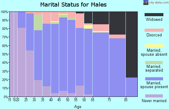Zip code 55309 marital status for males