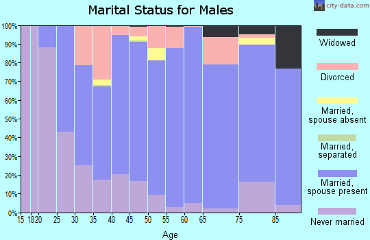 Zip code 55336 marital status for males