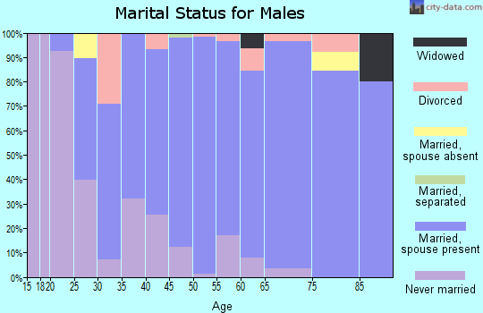 Zip code 55357 marital status for males