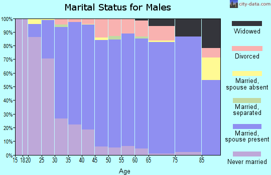 Zip code 55372 marital status for males