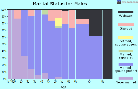 Zip code 55375 marital status for males