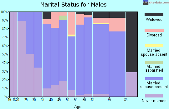 Zip code 55382 marital status for males