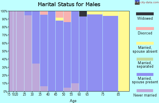 Zip code 55386 marital status for males