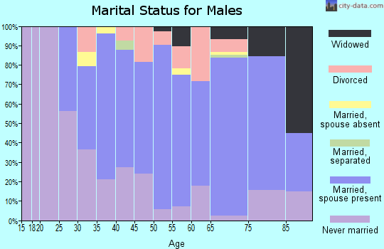 Zip code 55389 marital status for males