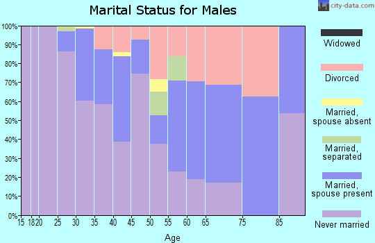 Zip code 55401 marital status for males