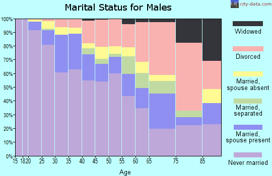 Zip code 55404 marital status for males