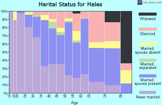 Zip code 55409 marital status for males
