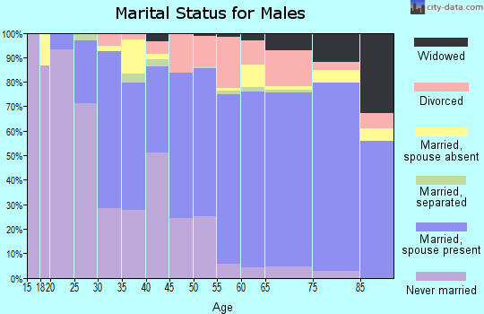 Zip code 55431 marital status for males