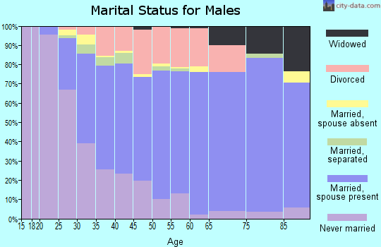Zip code 55433 marital status for males