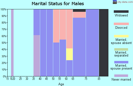 Zip code 55602 marital status for males