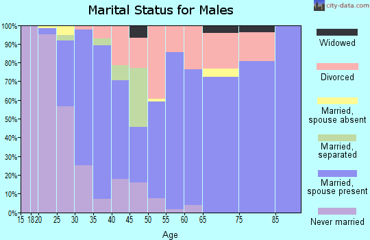 Zip code 55748 marital status for males