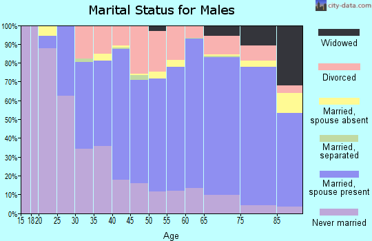 Zip code 55912 marital status for males