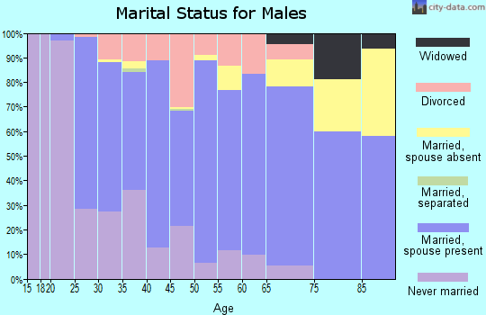 Zip code 55946 marital status for males