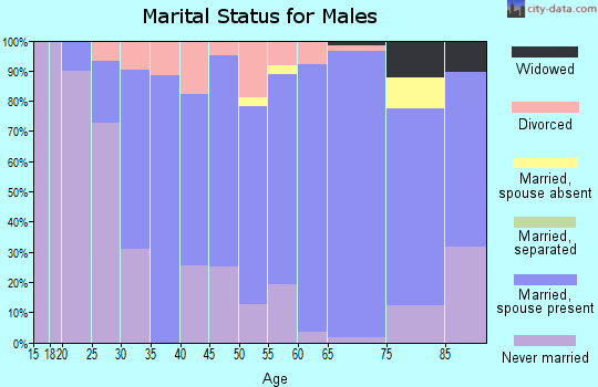 Zip code 55949 marital status for males