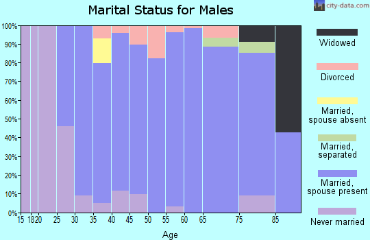 Zip code 55955 marital status for males
