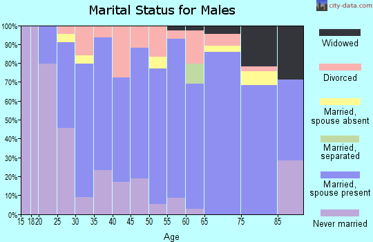 Zip code 55956 marital status for males