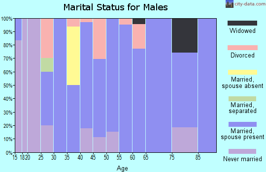 Zip code 55957 marital status for males